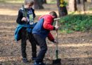 Łebianie sadzili drzewa dla przyszłych pokoleń